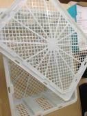 Rổ nhãn thái 12kg , rổ nhựa giá rẻ Phú Hòa an