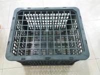Chuyên cung cấp rổ quýt lùn 20kg - Phú Hòa an
