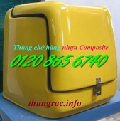 Sản xuất thùng chở hàng sau xe máy, thùng giao hàng tiếp thị, thùng giao hàng