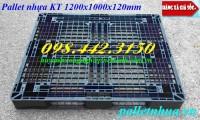 Xả hàng pallet nhựa 1200x1000x120mm giá siêu rẻ chỉ 260.000đ call 0984423150