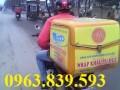 thùng chở hàng gắn sau xe máy giá rẻ - 096 383 9593 Loan