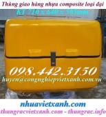 Bán thùng chở hàng, thùng giao hàng sau xe máy loại đại và loại max giá rẻ