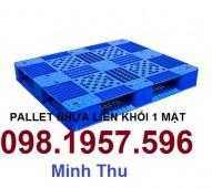 Chuyên cung cấp Pallet nhựa, pallet dùng trong nhà xưởng, kho bãi