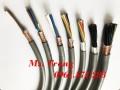 Nhà phân phối cáp điều khiển 20 lõi Altek Kabel chính hãng